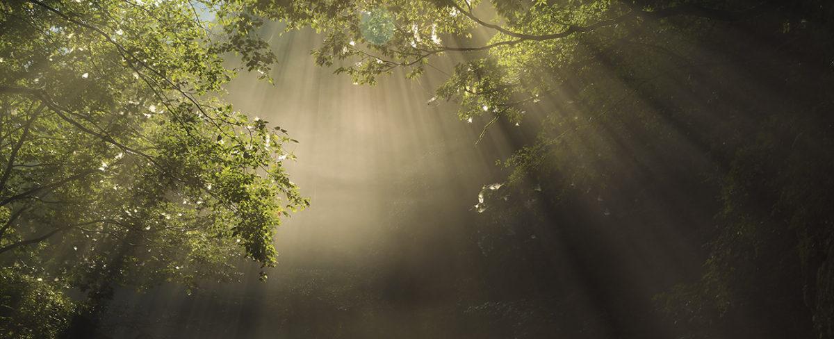 癒しの窓 風景写真ギャラリー